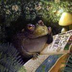 Сказка про популярную, мудрую жабу и умного щегла
